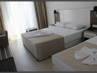 Hotel Shark